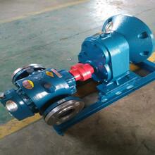 羅茨油泵鑄鋼羅茨泵高溫羅茨泵大流量皮帶羅茨油泵圖片
