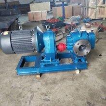 高温罗茨油泵LC不锈钢罗茨泵高粘度食品泵厂家图片