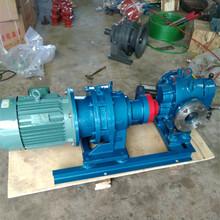 高粘度羅茨泵LC不銹鋼羅茨泵高粘度食品泵廠家圖片