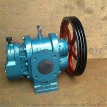 泊海大流量化工泵LC50罗茨泵高温防腐泵厂家直销图片