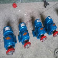 廣東膠水泵ZYD外潤滑齒輪泵皂液泵廠家圖片