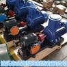 泊头金海生产WQCB铸钢保温齿轮泵沥青泵合金保温泵