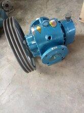 山東大流量羅茨油泵LC皮帶羅茨泵羅茨轉子泵圖片