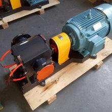 安徽沥青泵WQCB保温沥青泵工业保温齿轮泵现货工应图片