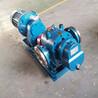 高粘度物料泵LC罗茨油泵大流量罗茨转子泵现货供应
