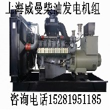 四川发电机,四川发电机组,四川柴油发电机,四川柴油发电机组