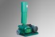河南省羅茨真空泵供應,河南造紙設備羅茨真空泵