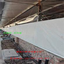 猪场卷帘布_广东猪场卷帘布-广西猪场卷帘布-海南猪场卷帘布厂家-图片