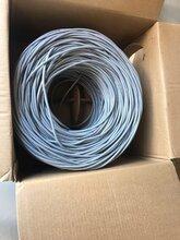 200米一卷饋線回收南充GYTA53光纜回收7/8饋線電話圖片