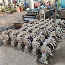 出售9成新英格索兰二手气动隔膜泵二手进口隔膜泵化工酸碱原料输送图片