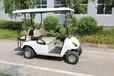 广东CT-C2+2四座高尔夫球车