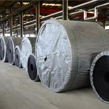白山ST1000鋼絲繩輸送帶價格圖片