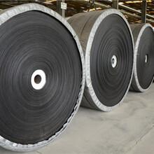威普斯ST2000皮带,驻马店生产STS2000B1800宽图片