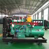 潍坊50KW柴油发电机组哪家质量好备用电源哪家便宜实惠