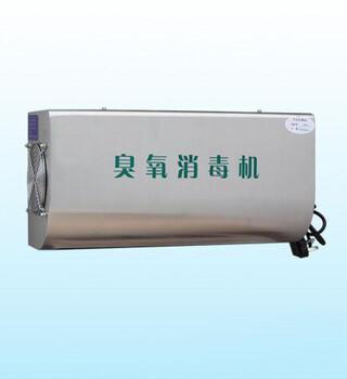 壁挂式消毒机5克臭氧机空间消毒专用机