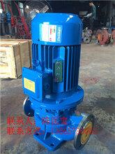 25-125立式管道离心泵厂家立式管道泵不锈钢立式管道泵isg管道泵厂家图片