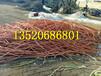 宁德福安回收铝导线多少钱一米欢迎咨询