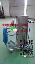 移动泡沫清洗机价格 泡沫清洗设备厂家图片