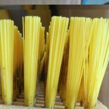 清洁毛刷2111食品厂清洗刷图片