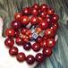 仙游紫珍轩小叶紫檀佛珠价格野生林印度小叶紫檀高密泥料佛珠2.012颗360度满金星手串
