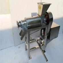 椰肉蘋果螺旋榨汁機不銹鋼榨汁機圖片