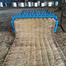 大棚保温麦草编织机电动草垫机图片
