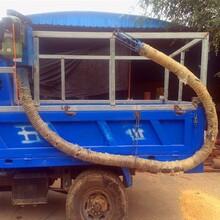 江苏泰州吸粮机绞龙弹簧吸粮机长距离物料输送机图片图片