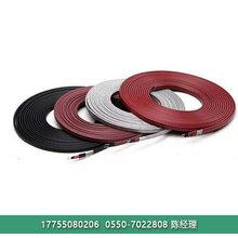 暖邦江西电伴热DBW-15-220-B低温化工管线解冻电伴热带