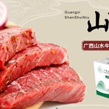 广西山水牛有机鲜活牛肉养殖基地供应牛肉牛副产品图片