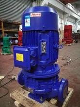 IRG型立式熱水循環泵IRG50-200型單級單吸熱水管道離心泵圖片