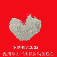 温州抛丸磨料不锈钢丸耐磨耐腐蚀钢丝切丸