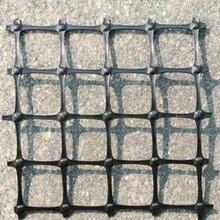 连云港双拉塑料土工格栅批发煤矿双抗塑料格栅网箱养鱼塑料格栅施工简单图片