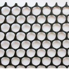 无锡HDPE土被控制灵魂而反噬其主工网批发边坡防护土工网无锡土工网图片图片