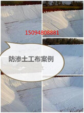 十堰公路养护土工布,十堰涤纶短丝土工布价格合适,施工便捷图片