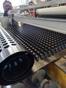滁州塑料排水凸片厂家推荐规格