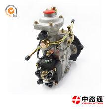 VE分配泵总成VE6/12F1300R929-2厂家直销图片