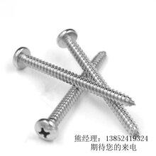 304不銹鋼十字半圓頭自攻釘304十字凹槽自攻釘圖片