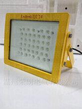 淄博WRTLE310防爆LED灯投光专用防爆灯