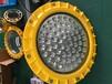 应急照明灯;GF9050-80WLED防爆灯