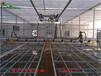 嘉兴市智能温室喷灌机简介-温室移动喷灌机厂家直销