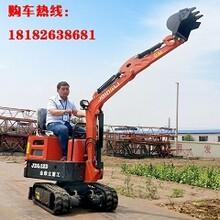 河南小型挖掘機市場圖片