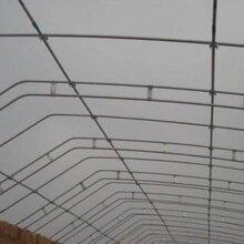 温室建造-塑料大棚的覆盖材料-成本低效益高-河北安平图片