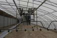 東營溫室移動式噴灌機流量華耀水車直接生產