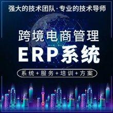 无货源亚马逊全球开店,跨境电商ERP软件招商定制