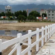 广东生产PVC护栏吴少看到警察到来了他还有点疑惑马场护栏花园围栏塑钢护栏栅栏图片