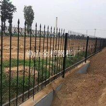 河源Ψ工矿企业安全网镀锌围栏运动场馆免维护锌钢围栏规格Ψ图片