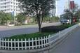 安心花園裝上了PVC護欄