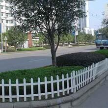 安心花园装上了PVC护栏图片