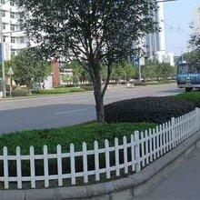 安心花園裝上了PVC護欄圖片
