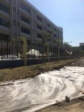 广东安全防护围墙专用护栏安装简单坚固耐用锌钢护栏三横杆双弯栅栏图片